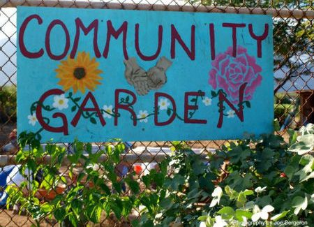 Community Garden Open Day – May 16th 11am to 2pm